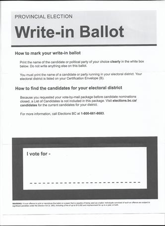 voterigging3.png